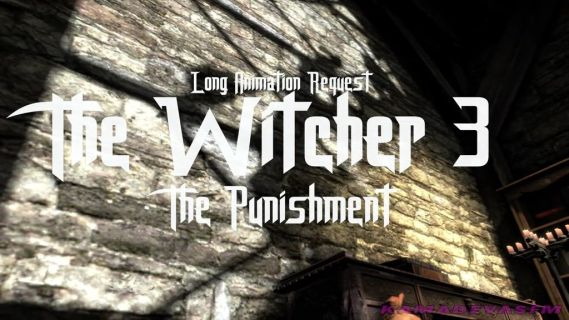 The Witcher Punishment